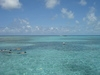 Belize Coral Gardens and Shark Ray Alley Snorkel with Caye Caulker Beach Break Excursion Amazing time