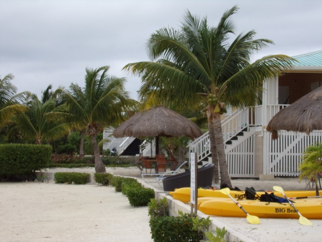 Belize Exclusive Secluded Island Beach Day Pass Excursion Wonderful Time!