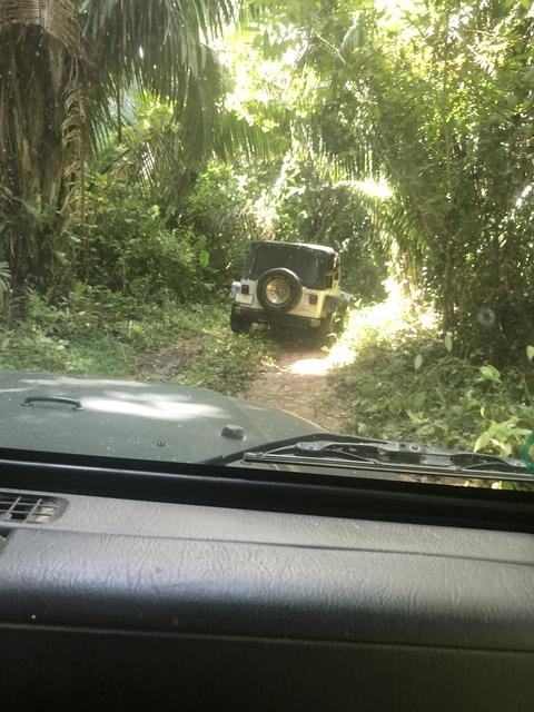 Belize Jeep, Zoo and Tropical Education Center Excursion Driving through jungles was a blast