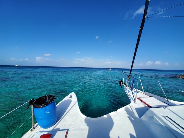 Best Cozumel Catamaran Sail and Coral Reef Snorkel Excursion Fantastic Experience!
