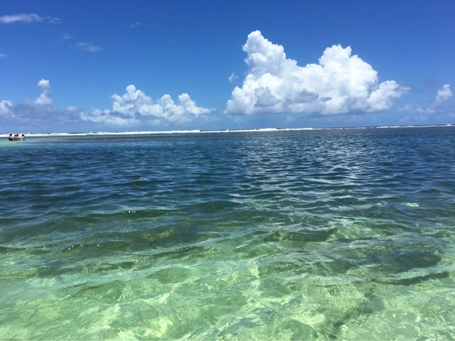 Costa Maya Yaya Beach Break Day Pass Excursion Costa Maya Excursions