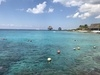 Cozumel Chankanaab Beach Park Snorkel and All Inclusive Day Pass Excursion Absolutely LOVED Chankanaab in Cozumel!!!