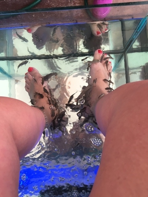 Cozumel Fish Spa Pedicure Experience Love love loved it!!!!