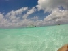 Cozumel Private Marine Park Snorkel and El Cielo Sandbar Powerboat Excursion HIGHLY RECOMMEND!!!