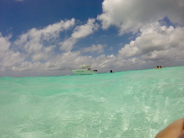 Cozumel Private Secluded Marine Park Reef Snorkel and El Cielo Sandbar Powerboat Excursion HIGHLY RECOMMEND!!!