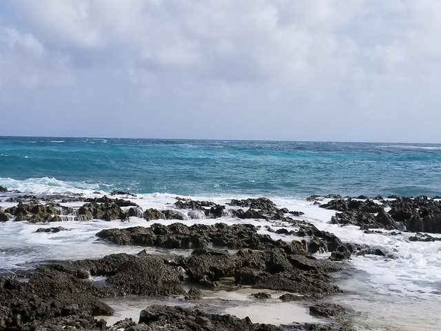 Cozumel Punta Sur Park Dune Buggy, Coral Reef Snorkel, Beach and Island Highlights Excursion Glad we did it!