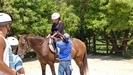 Falmouth Horseback Riding Excursion with Ocean Swim