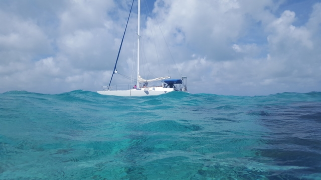 Grand Cayman Stingray City Catamaran Sail and Snorkel Excursion Absolutely the Best