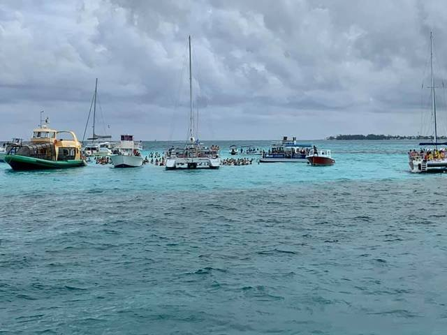 Grand Cayman Stingray City Sandbar, Coral Gardens and Barrier Reef Snorkel Excursion Super cool experience!