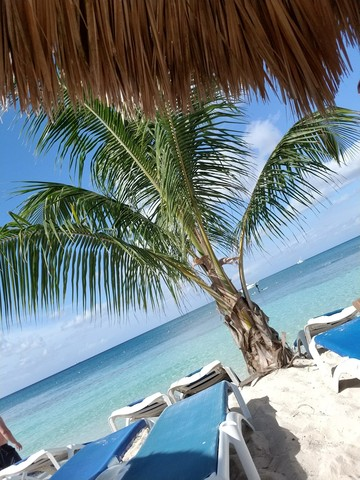 Mr. Sanchos Beach All Inclusive Day Pass Cozumel Surpassed expectations