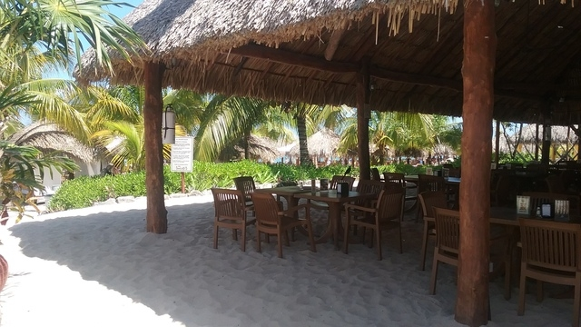 Mr. Sanchos Beach All Inclusive Day Pass Cozumel Great time, beware of extra fees
