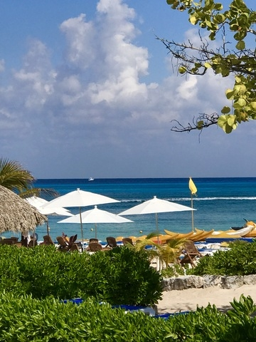 Mr. Sanchos Beach All Inclusive Day Pass Cozumel Always love this place!!