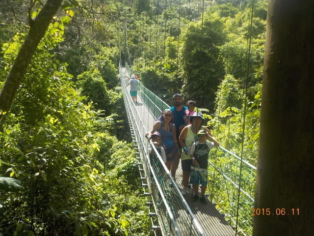 Roatan Eco Walkways, Treetop Suspension Bridges and Zip Line Adventure Excursion Great Family Adventure