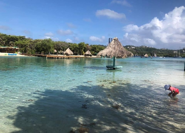 Roatan Little French Key Full Island Day Pass Excursion Great time for the whole family!