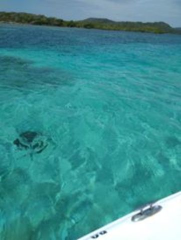 Roatan Private Customized Boat Charter Excursion Best Excursion