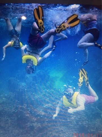 Roatan South Side Snorkel and Beach Break Excursion Roatan South Side Snorkel and beach break.