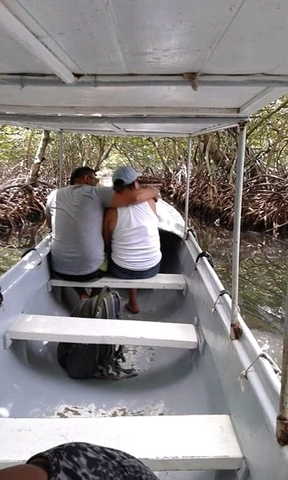Roatan Ultimate Nature Combo: Mangrove Cruise, Horseback Riding, Beach and Snorkel Excursion remarkable excursion