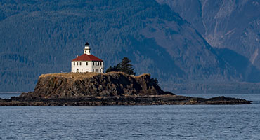 Haines Cruise Excursions