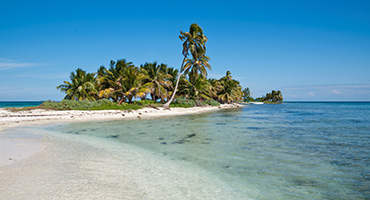 Harvest Caye Cruise Excursions