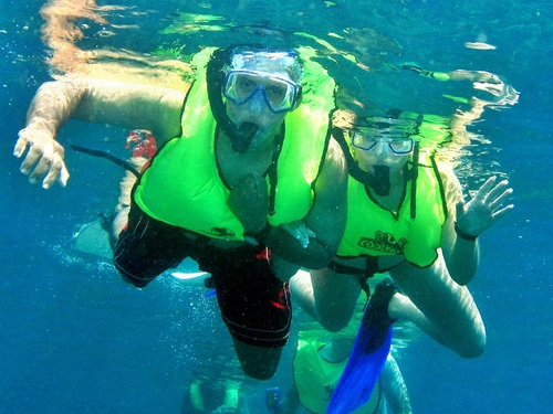 Dominica Snorkel Cruise Excursion Prices