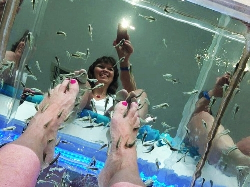 Cozumel Mr. Sanchos fish pedicure Cruise Excursion Tickets