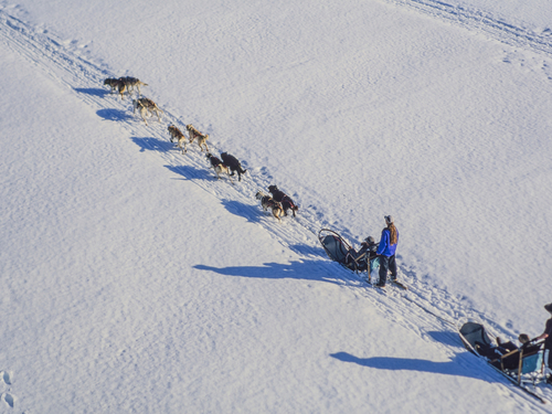 Juneau Alaska helicopter and dog sled Tour Reservations