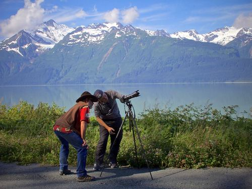 Haines wildlife photography Shore Excursion Reservations