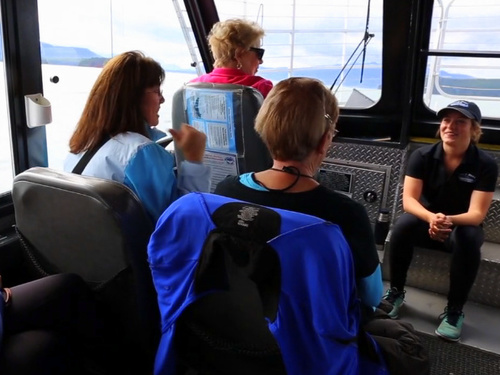 Juneau whale watching Tour Booking