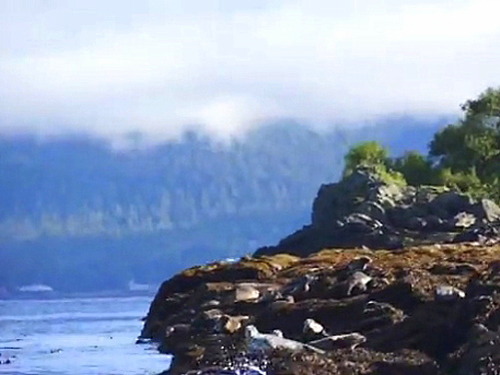 Ketchikan  Shore Excursion Reservations