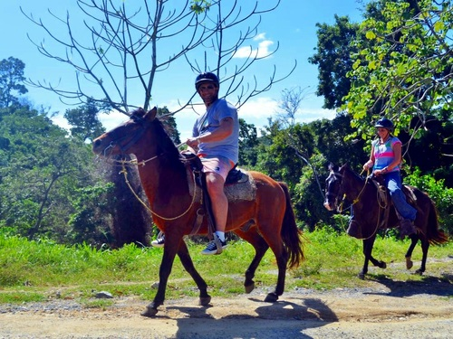 Roatan jungle horse riding Cruise Excursion Booking