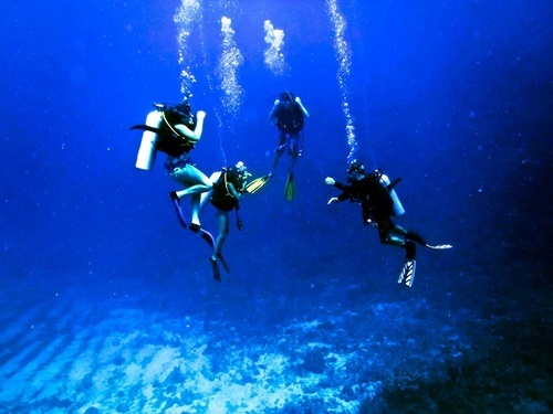 Roatan Scuba Diving Shore Excursion Reservations