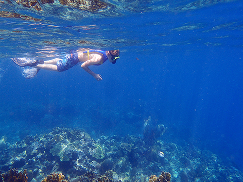 Roatan Monkey Park Snorkel Shore Excursion Reviews