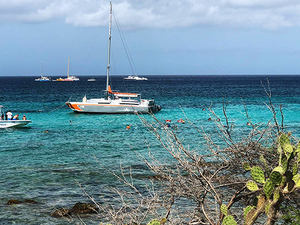 Aruba Private Catamaran Sail and Snorkel Excursion