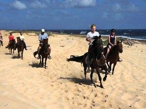 Aruba Private Horseback Riding Excursion