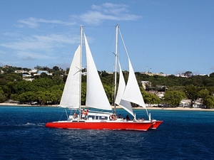 Barbados Catamaran Sail, Sea Turtle, Shipwreck and Tropical Fish Snorkel Excursion