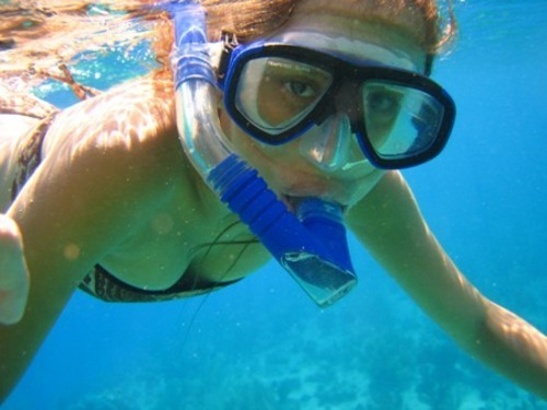 Barbados West Indies sail and snorkel Tour Reviews