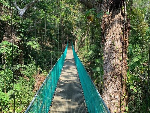 Roatan suspension bridges Cost