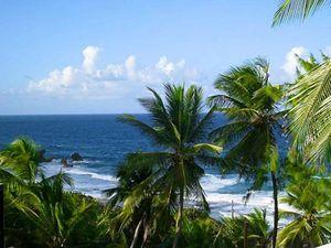 Beautiful Barbados, Highlights and Sightseeing Excursion with Lunch