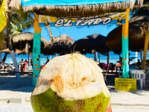 Costa Maya Mexico Mahahual All Inclusive Beach Club Excursion Reviews