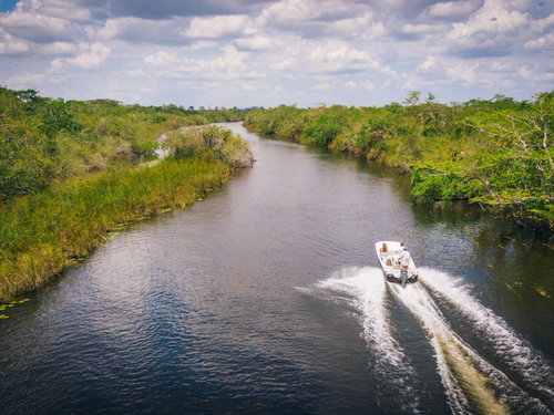 Belize City New River Sightseeing Shore Excursion Cost
