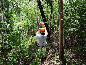 Belize Jungle Canopy Zip Line and Beach Excursion