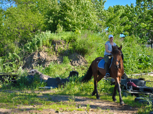 Belize horse ranch Trip Reservations