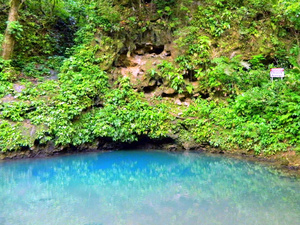Belize St. Herman's Inland Blue Hole National Park Excursion