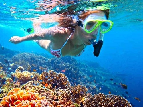 Roatan snorkel Shore Excursion Booking