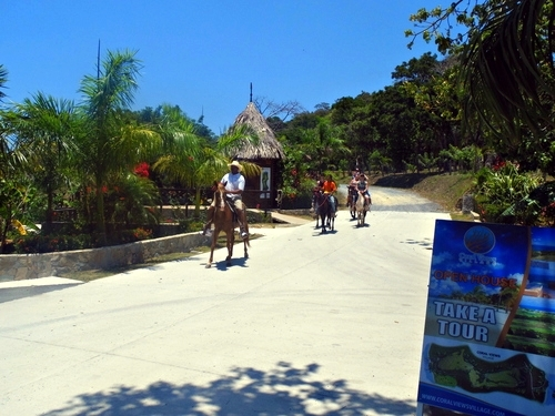 Roatan horseback riding Excursion Tickets