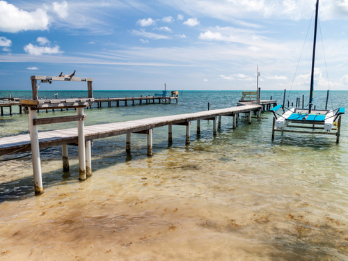 Belize City snorkeling at Shark Ray Alley Shore Excursion Booking