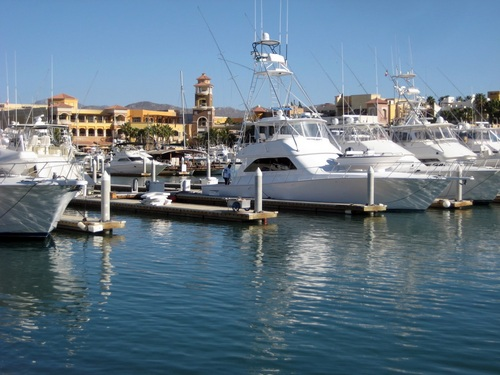 Cabo San Lucas  Mexico glass bottom boat  Cost