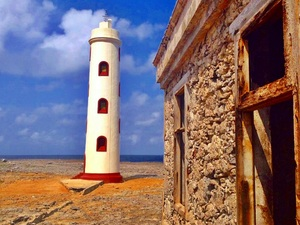 Bonaire Island Discovery and Sightseeing Excursion