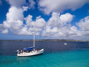 Bonaire Land and Sea Excursion