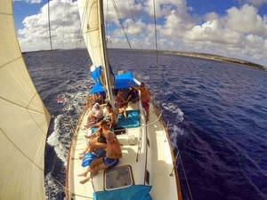 Bonaire Sail and Snorkel Excursion